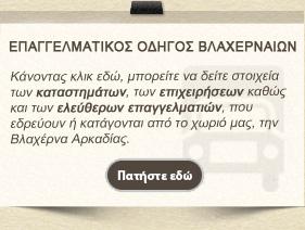 ΕΠΑΓΓΕΛΜΑΤΙΚΟΣ ΟΔΗΓΟΣ